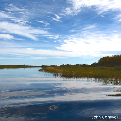 Marsh with open water in northern Wisconsin