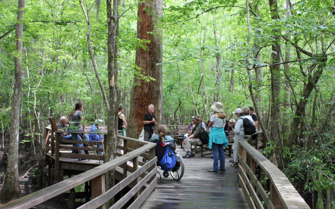 Wetland protection across the nation: Carolina Wetlands Association