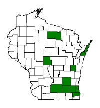 A map showing counties where tall manna grass is suspected to have arrived.