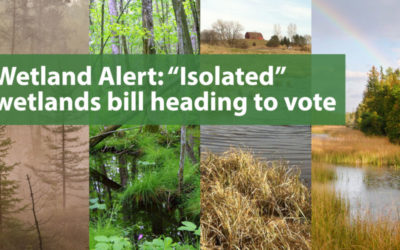 "Wetland Alert: ""Isolated"" wetlands bill heading for a vote"