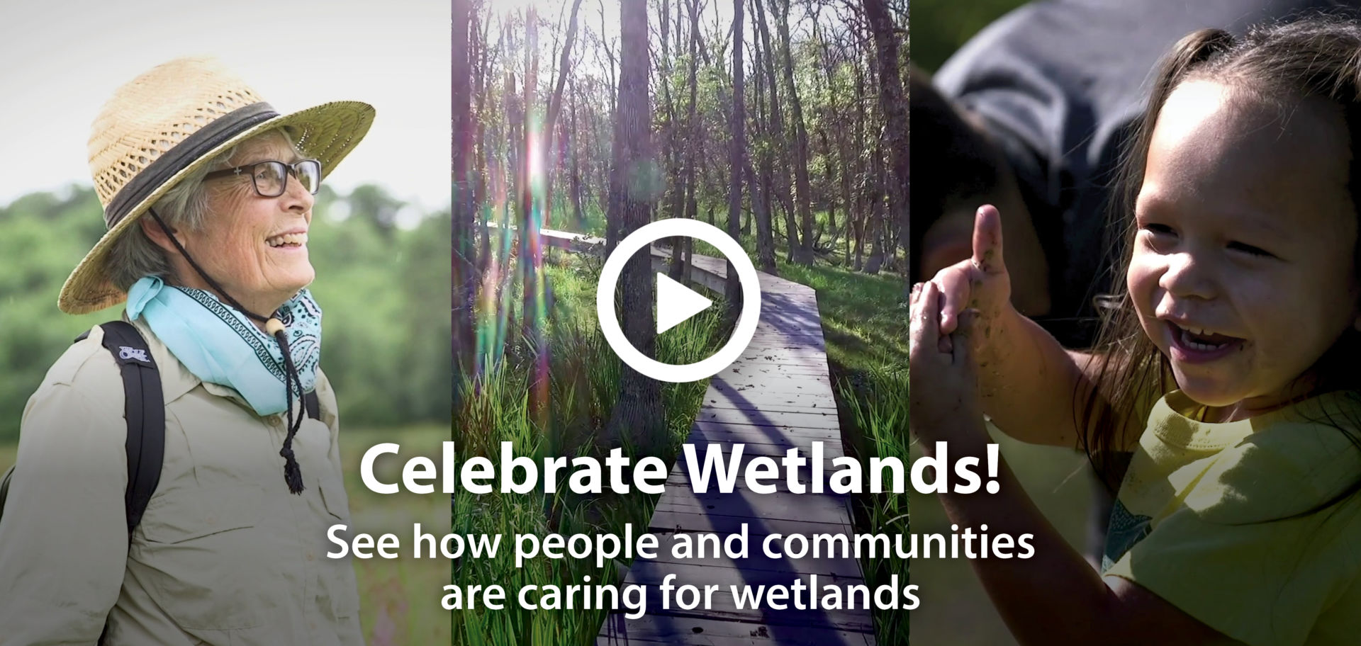 Wisconsin's waters, wildlife, and people need healthy wetlands