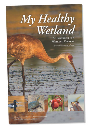 My Healthy Wetland handbook cover.