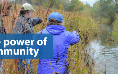 Advancing Wetland Conservation in Wisconsin