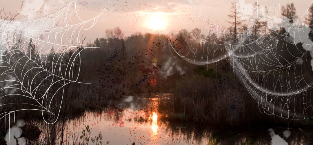 A wetland sunset with spooky graphics.