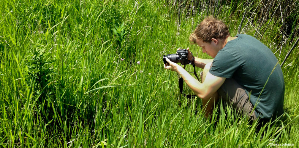 Connecting our wetland community with new virtual series