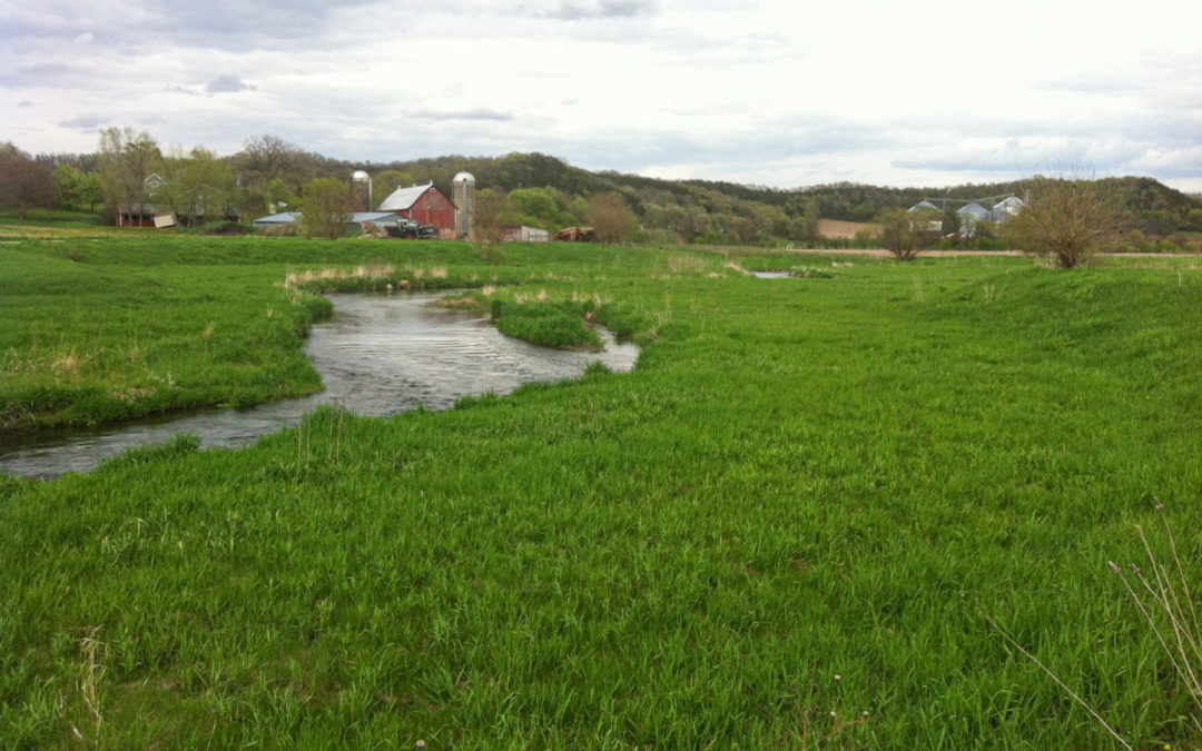 Black Earth Creek with functioning floodplain in foreground with red bard and farm in the background.
